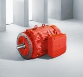 DR - Elektro motor